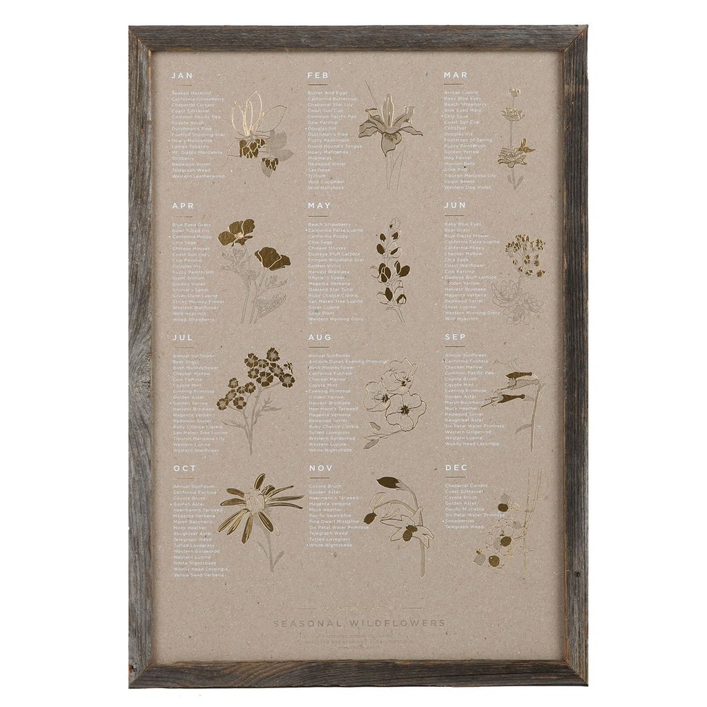 Young America Creative Objects Wildflowers / Gray / FINAL SALE Wildflowers Seasonal Poster