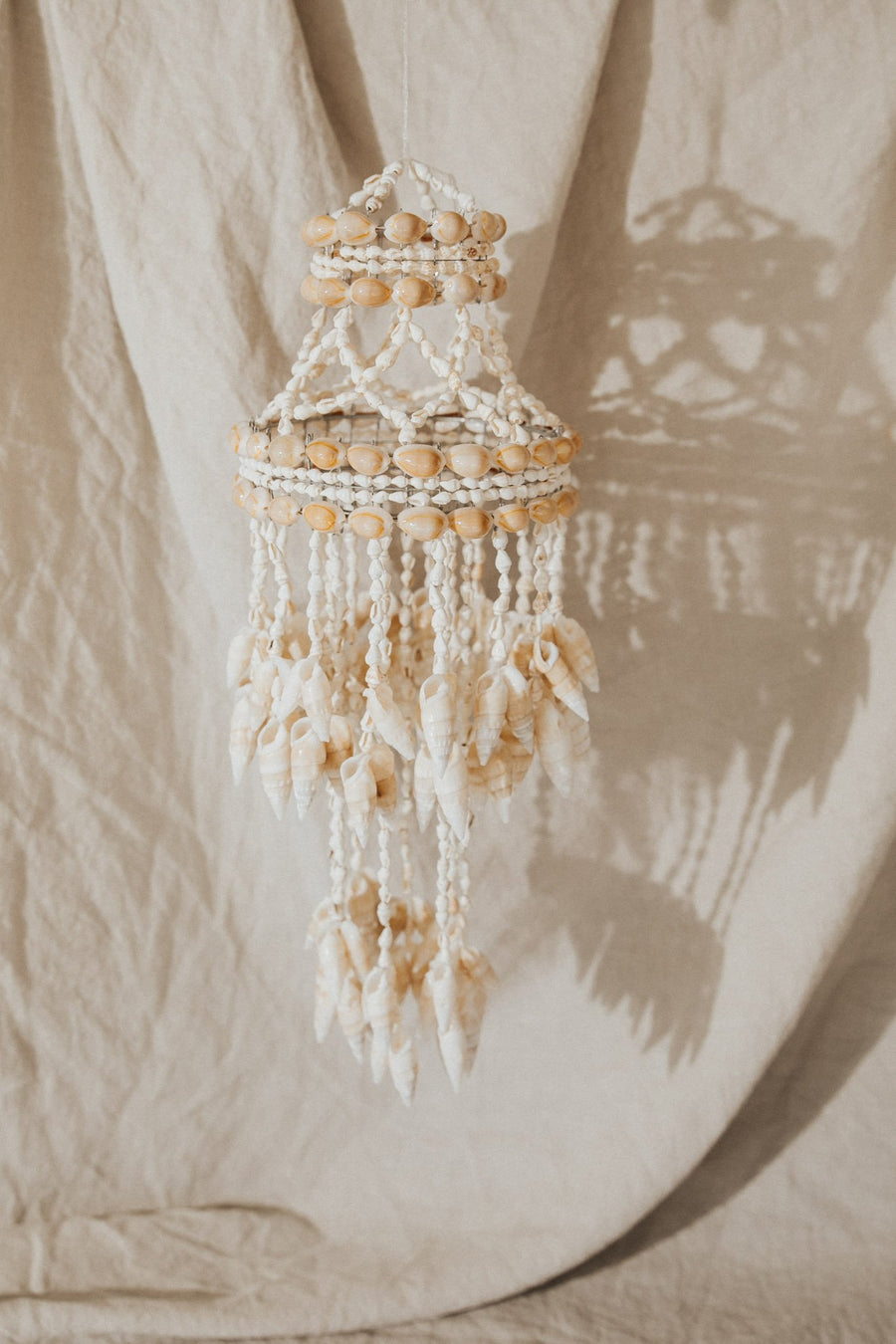 Atlantic Coral Enterprise Objects Santiago Seashell Chandelier