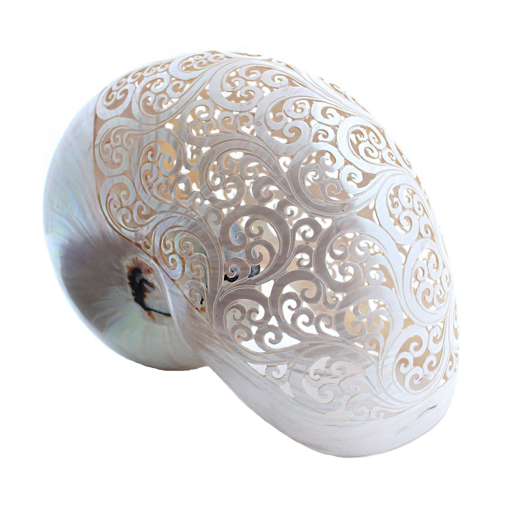 Bali Objects Hand-Carved Pearl Nautilus Shell