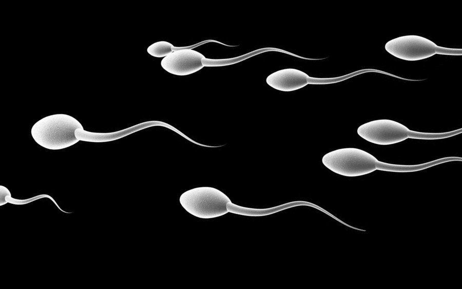 It Takes Two- Male Infertility