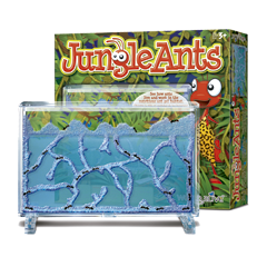 Picture of Jungle Ants