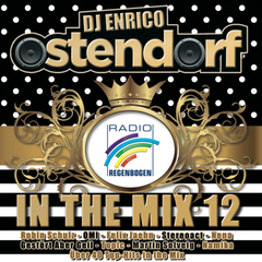 In The Mix Vol. 12