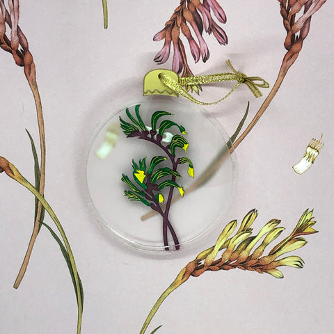 The Mangles Kangaroo Paw Bauble brooch