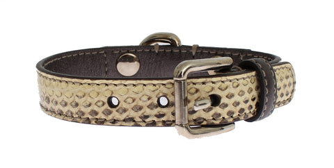 Beige Leather Ayers Silver Buckle Dog Collar