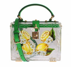 Plexi Lemon Motive Painted Hand Shoulder Bag