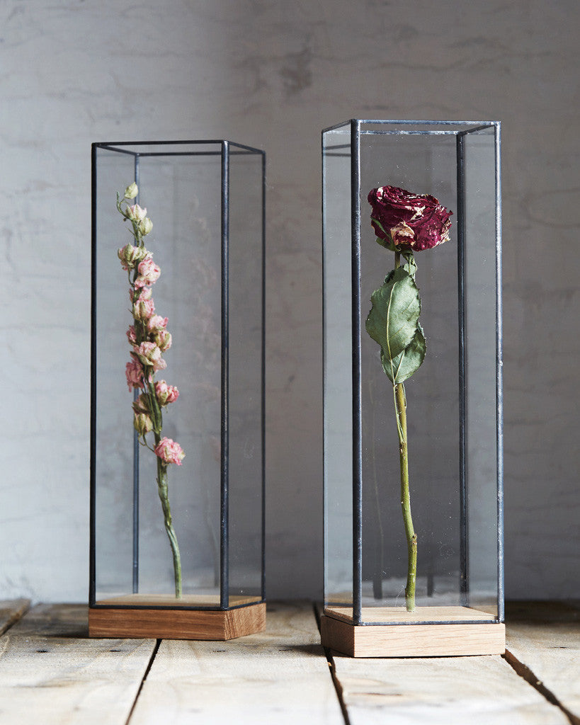 10¹² Terra Flower Showcase - Large Black (OUT OF STOCK)