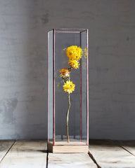 10¹² Terra Flower Showcase - Large Copper