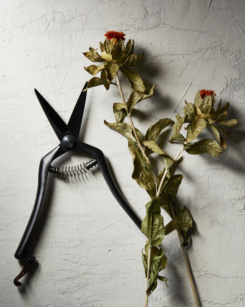 Tajika Black Thinning Garden Shears