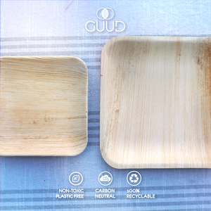 10 Pack SMALL All Natural Palm Leaf Disposable Plates - GUUD Products