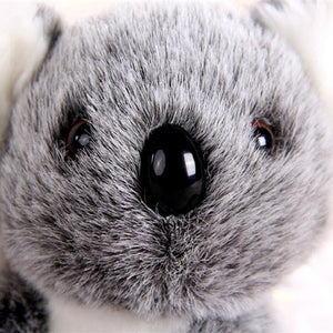 Stuffed Koala Plush Toy