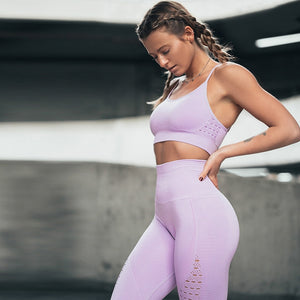 Seamless Shark Yoga Pants