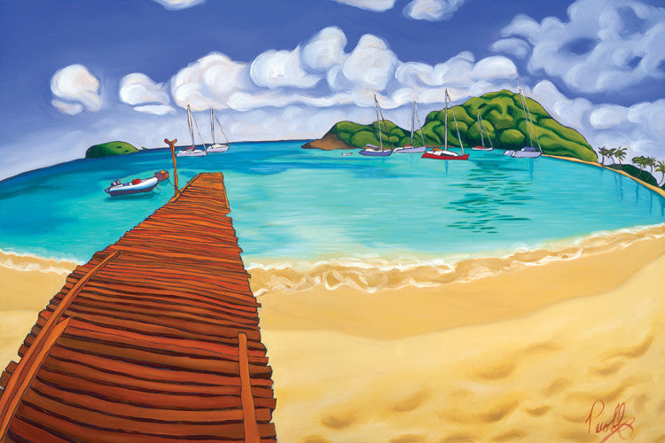 Blissful Waters of Salt Whistle Bay Perfect Giclee on Metal