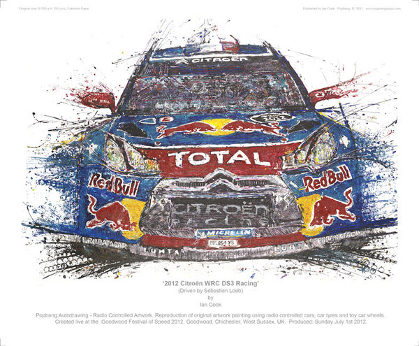 Citroën WRC DS3 Racing 2012 - POPBANGCOLOUR Shop