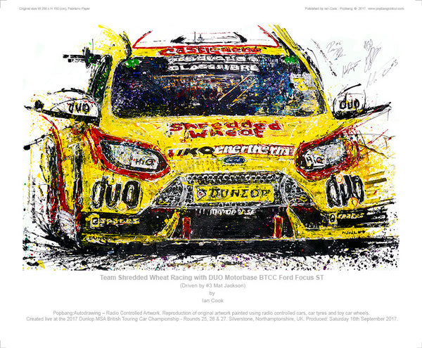 Ford Focus ST Team Shredded Wheat Racing with DUO Motorbase BTCC - POPBANGCOLOUR Shop