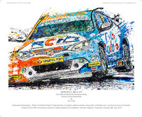 '2018 BTCC MG 6 GT AmD with AutoAid/RCIB Insurance Racing' - POPBANGCOLOUR Shop