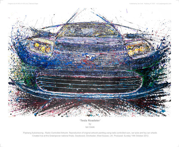Tesla Roadster - POPBANGCOLOUR Shop
