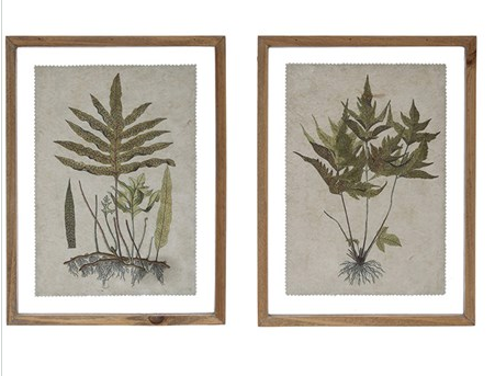 Wood Framed Botanical Print, Set of 4