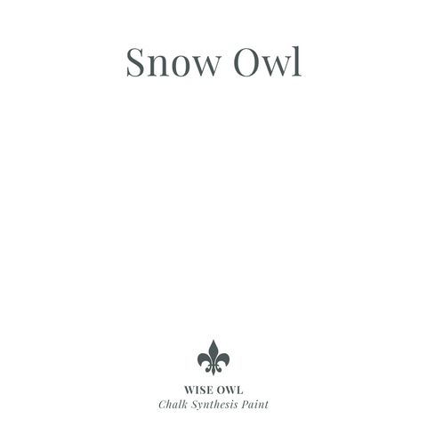 Snow Owl - One Hour Enamel