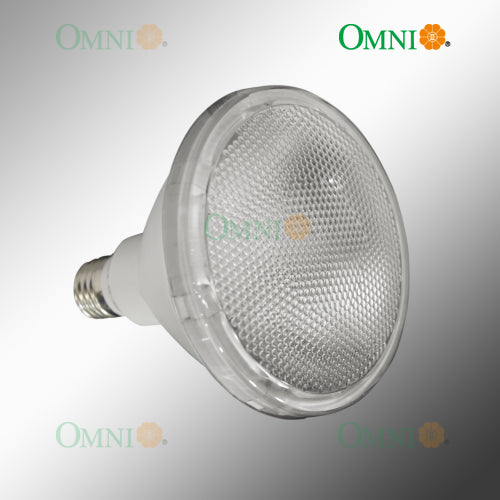 ECO/ OMNI PAR 38 15 Watt Spot/ Flood light