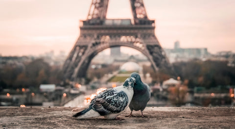 Tips for a Valentine's Day in Paris for Tourists