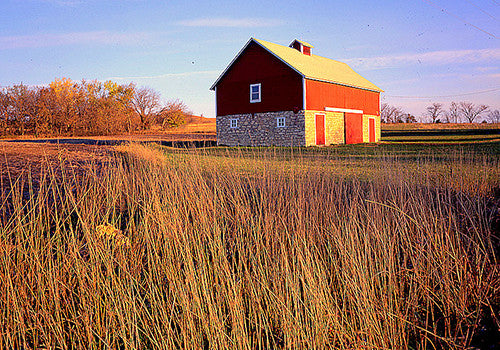 Prairies & Grasslands - NEW!