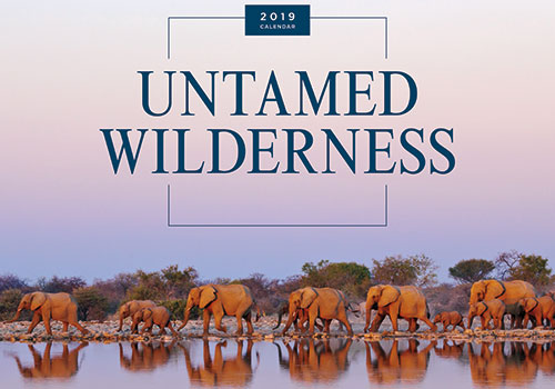 Untamed Wilderness - Prestige line