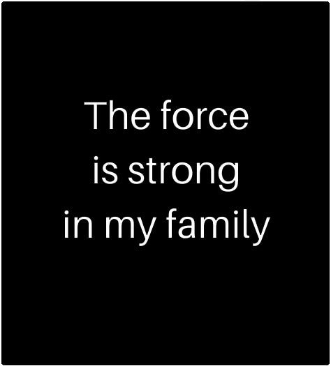 Family Force