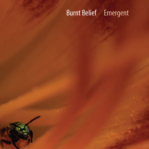 Burnt Belief | Emergent