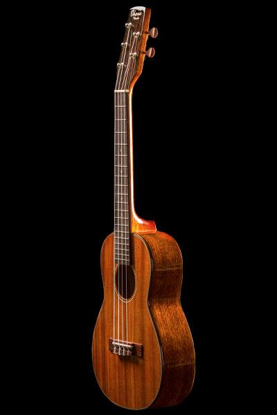 More than Four 5 String Series