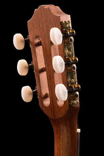 More than Four 6 String Series
