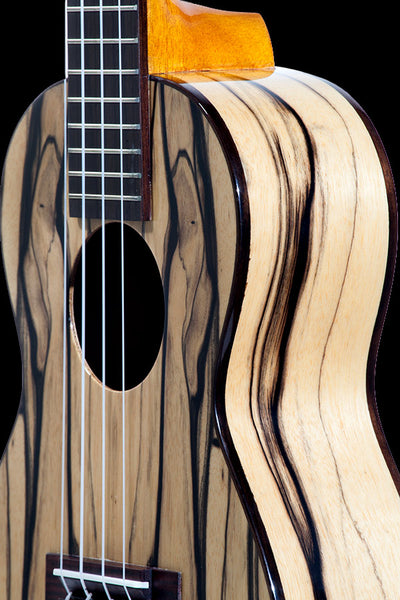 CK-15BWE Black & White Ebony Concert
