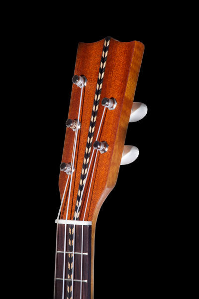 Obsolete Models CK-28-5 Solid Premium Mahogany Nunes Style 5-String Concert