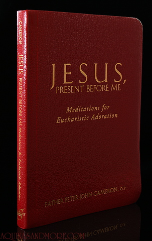 Jesus, present before me by Father Peter John Cameron