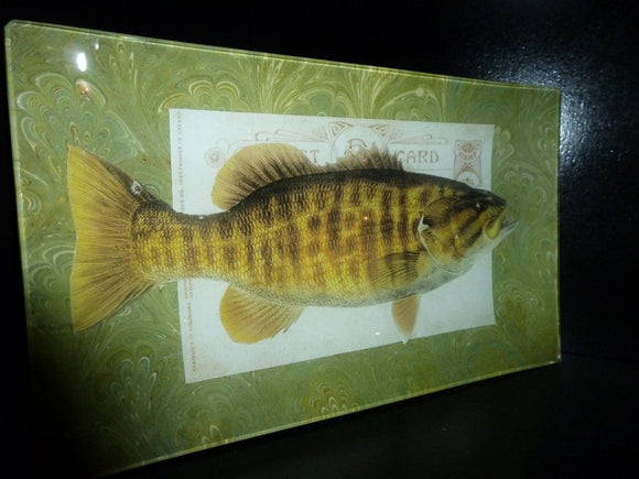 Bass Fish Decoupage Tray