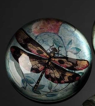 BOTANICAL DRAGONFLY WITH BLUE BACKGROUND PAPERWEIGHT