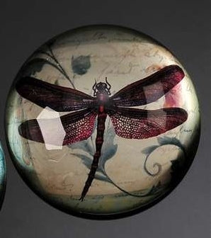 BOTANICAL BURGUNDY DRAGONFLY PAPERWEIGHT
