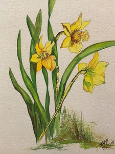 "Limited Edition Numbered Painting Print ""Daffodils B"""