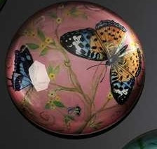 BOTANICAL BUTTERFLY WITH PINK BACKGROUND PAPERWEIGHT