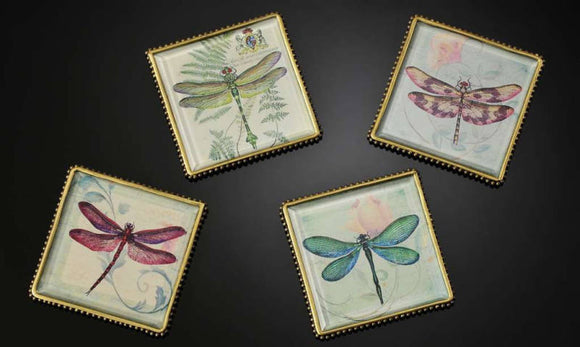 Botanical Dragonfly Plaques/Coasters Set Of 4