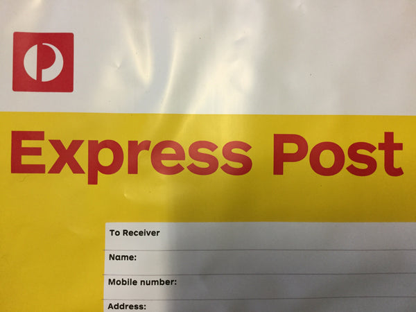 pay for EXPRESS shipping under 500gm
