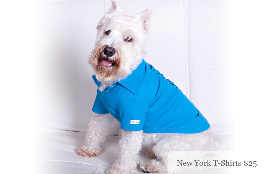 I Bark For T-Shirts