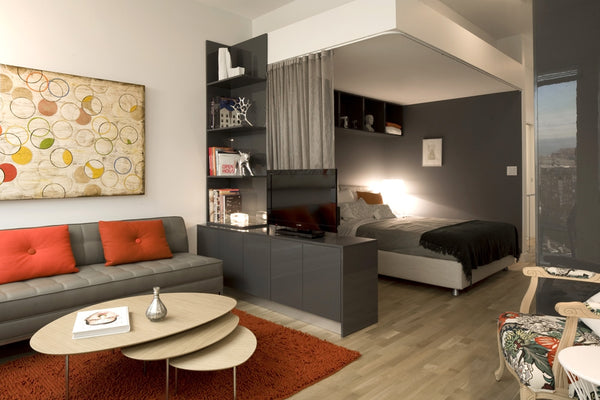 Small Space Living Micro Apartments Trending Big With Urbanites