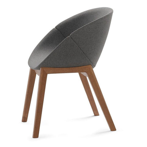 Modern Shell-Shaped Coquillea-L Armchair in dark grey wool with walnut legs