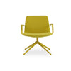 Buy Colorful 4-Star Base Wide Seating Pera Lounge Swivel Chair | 212Concept