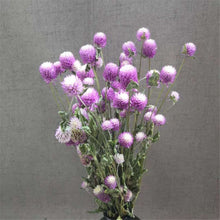 Load image into Gallery viewer, Gomphrena Bouquet | GULA MAGICK