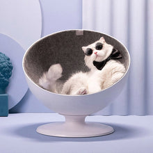 Load image into Gallery viewer, Boss Cat Swivel Chair | GULA MAGICK