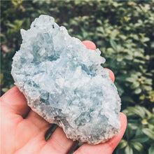 Load image into Gallery viewer, Kyanite Quartz Cluster - GULA MAGICK