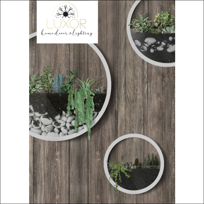 Nordic Round Plant Glass Wall Vase - wall decor
