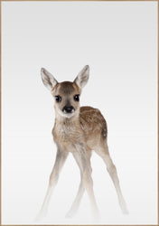 Misty Deer | POSTER BOARD