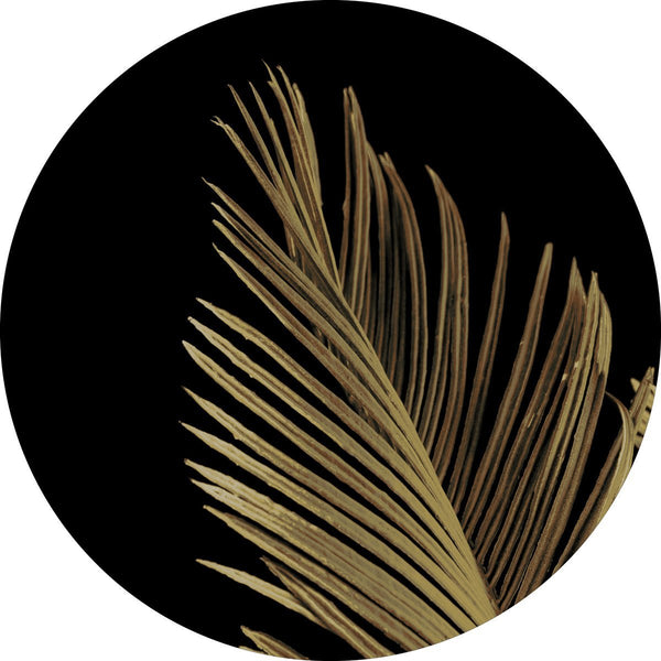 Golden palm 1 | CIRCLE ART